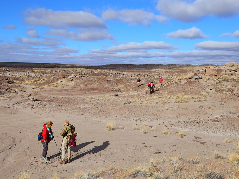 IMG_6319 Guided Backcountry Hike: Siltstone