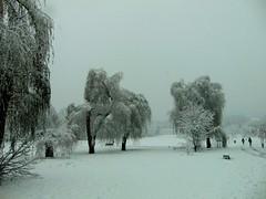 afară ninge liniștit/outside is snowing peacefully