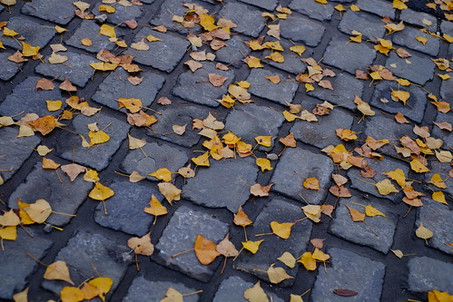 Decorated paving stones