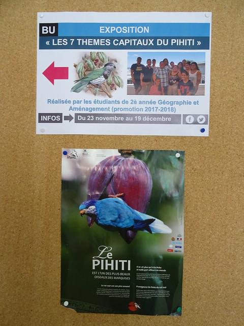 """BU - Exposition """"Les 7 thèmes capitaux du Pihiti"""""""