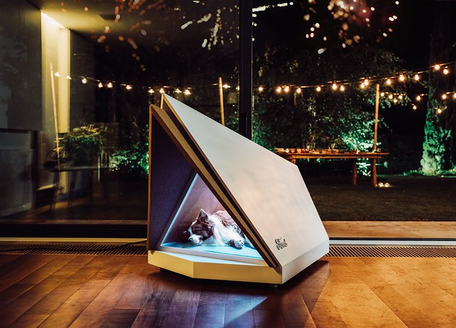 Noise-Cancelling Kennel Could Help Make Sure Your Dog Has a Happy New Year