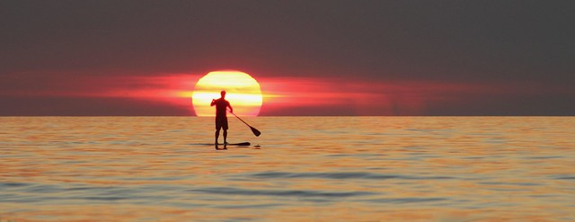 Lone Paddle Boarder at Sunset