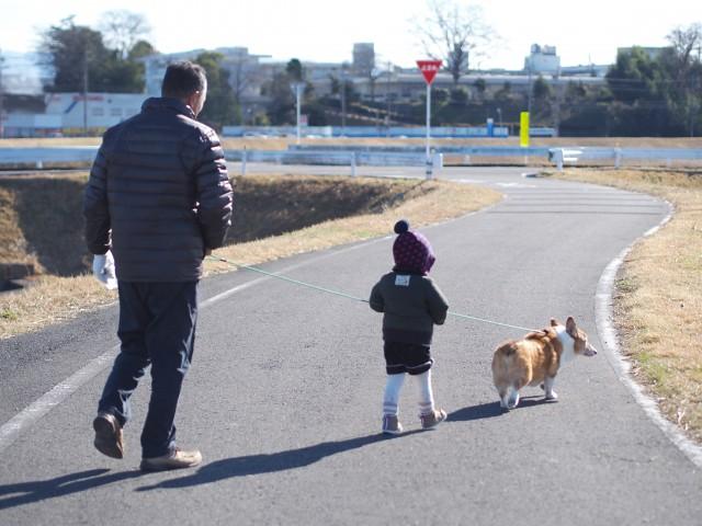 冬の散歩を楽しむ犬と飼主