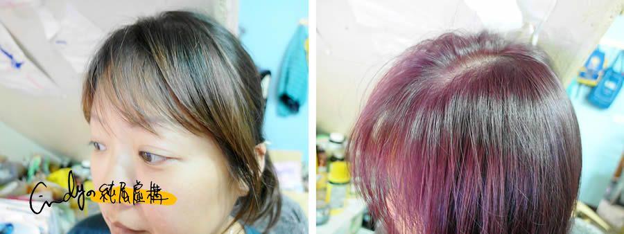 SOFEI 舒妃型色家植萃添加護髮染髮霜