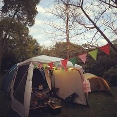 2睡帳1客廳帳,把生態區擠的剛剛好 #camping #decathlon