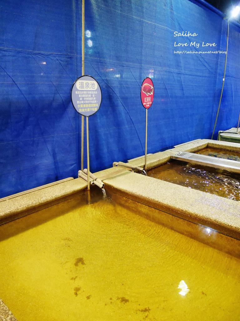 宜蘭礁溪一日遊景點推薦礁溪湯圍溝重口味溫泉魚溫泉泡腳池