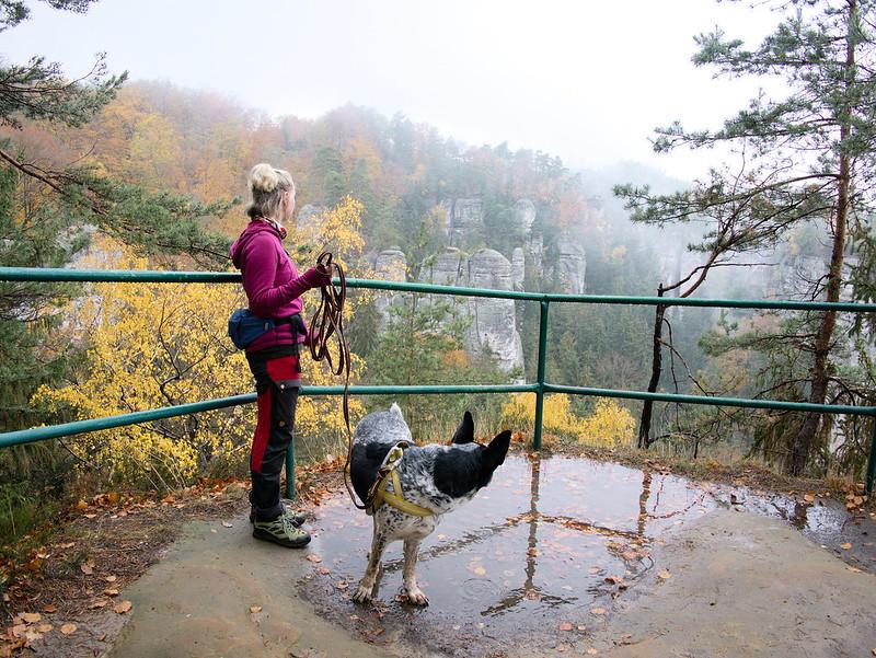 czeski raj pies