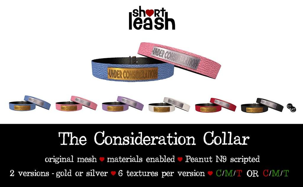 .:Short Leash:. The Consideration Collar