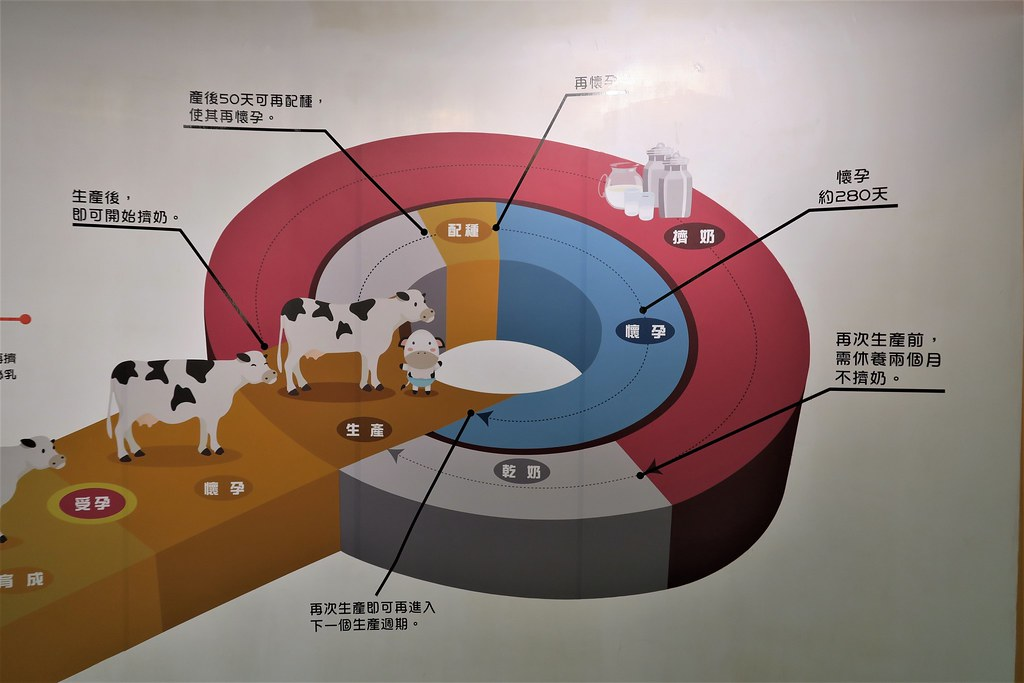 竹南奶酪觀光工廠 (9)