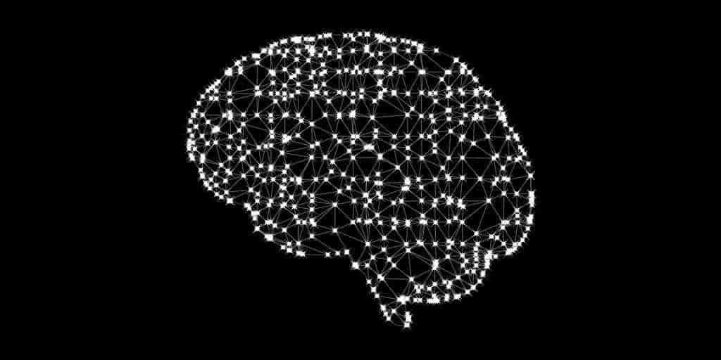 analyse-2000-cerveaux-schizophrénie-autisme