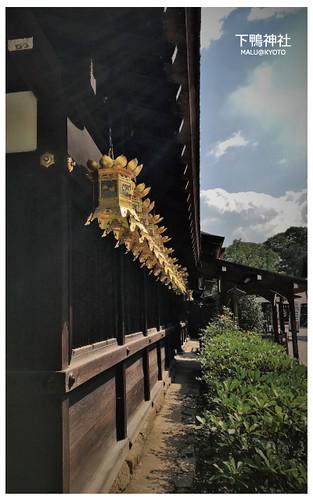 下鴨神社-3