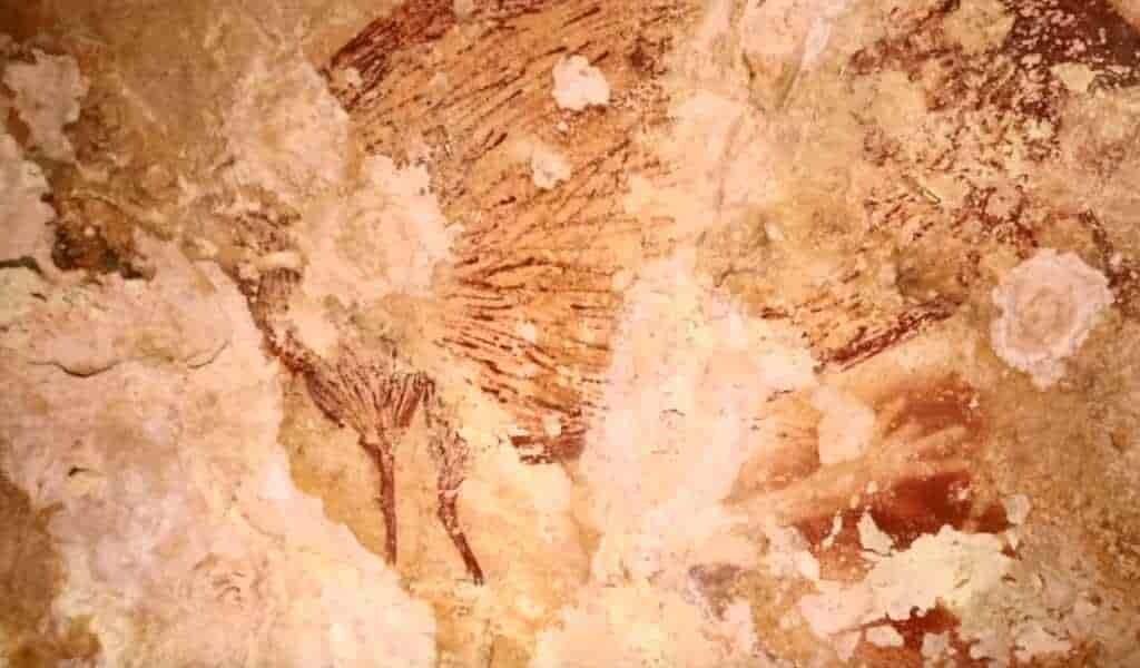 cavernes-empreintes-de-mains-doigts-coupés