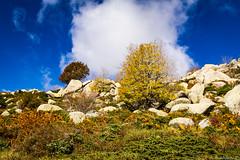 Le plateau du Cuscione en automne-003