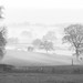 Misty morning, Macclesfield