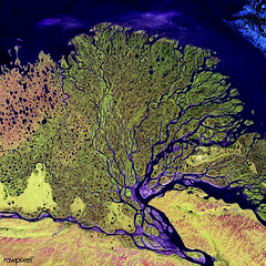 The Lena River, some 2,800 miles long, is one of the largest rivers in the world. Original from NASA. Digitally enhanced by rawpixel.