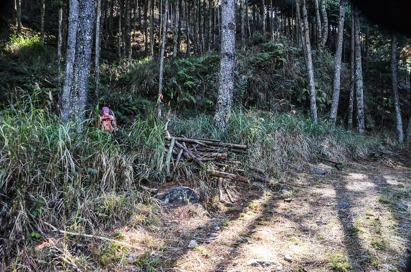 北三錐山林道登山口 (1)