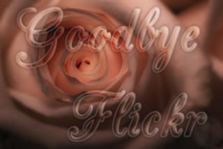 Goodbye Flickr