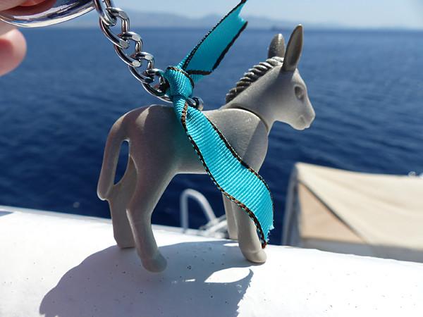 âne voyageur