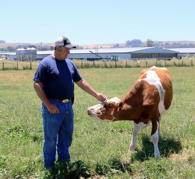 Farm Fresh To You: Clover Sonoma