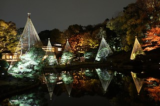 Water reflection@Waseda_Tokyo_10