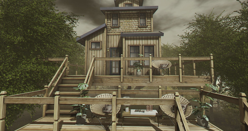 Living in a treehouse....