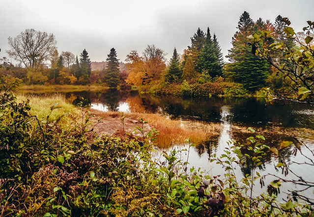 Cloudy autumn day, Sony DSC-W510