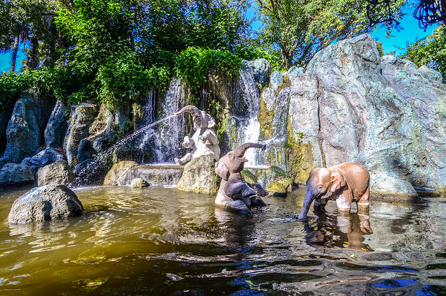Elephants playing Jingle Cruise, Nikon D7000, AF DX Fisheye-Nikkor 10.5mm f/2.8G ED