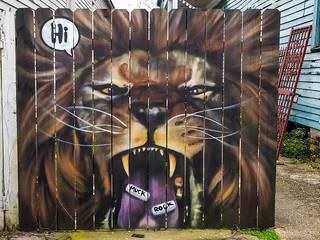 Hi Lion