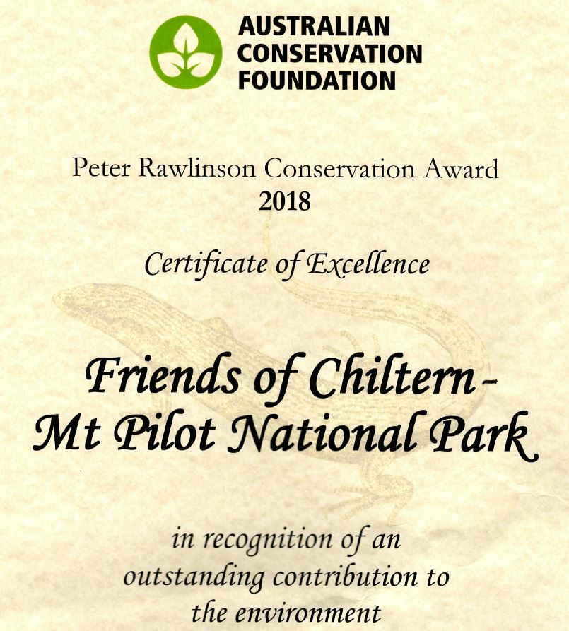 friends acf award