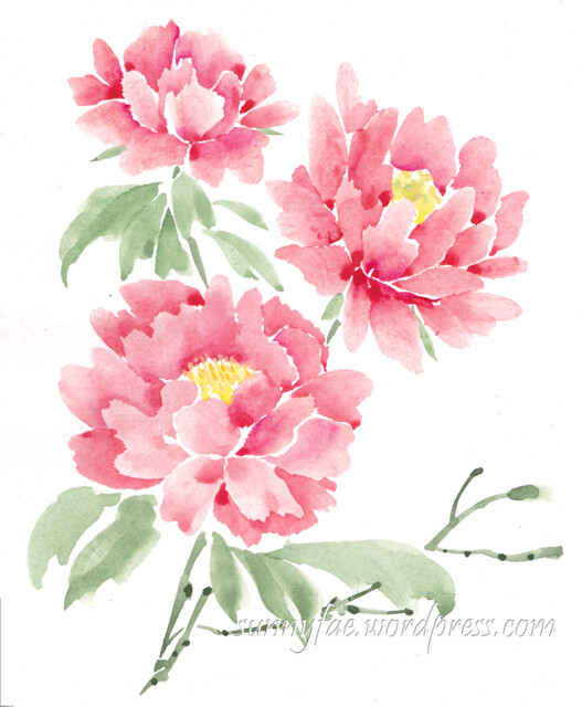 three peonies painted with watercolour