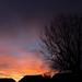 November Sunset-1