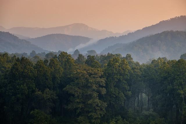 Sunrise over Jim Corbett | Jim Corbett NP, Uttarakhand, India