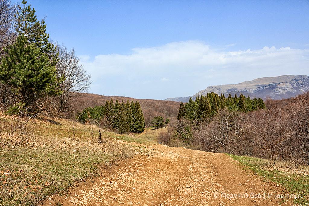 природа Крыма в фотографиях