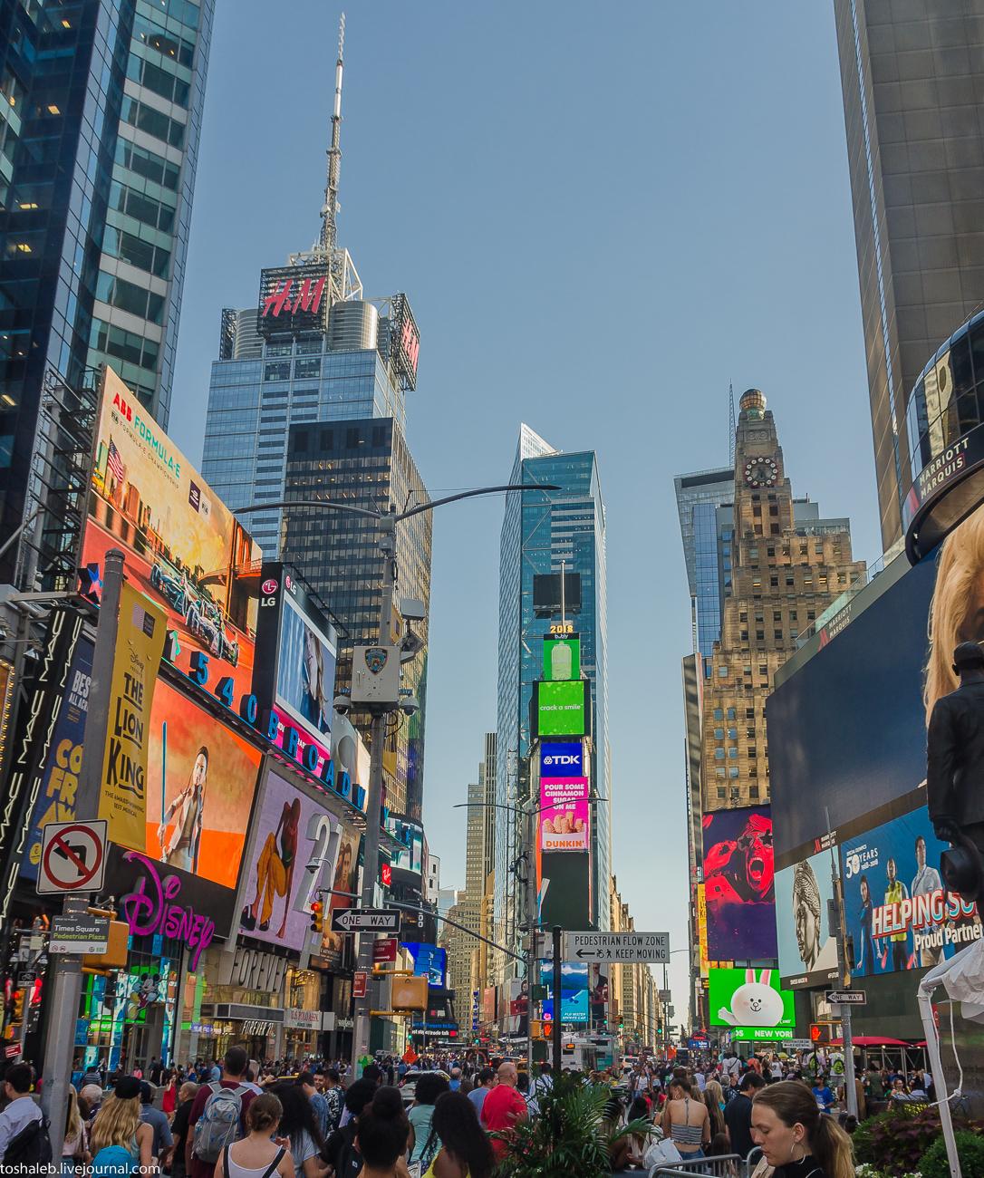 Нью-Йорк_Central Park_Times Square-44