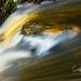 Beauty in the flow