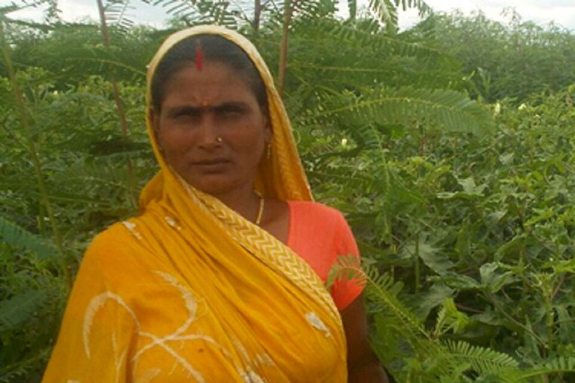 Climate Conservation Volunteering - Village Woman Teaches Eco-Friendly Ways to Combat Climate Change