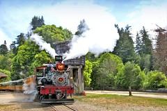 USA, la Californie, à toute vapeur à Roaring Camp Railroads