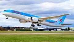 Boeing 787-9 Dreamliner EI-NEO Neos - Photo of Ichtratzheim