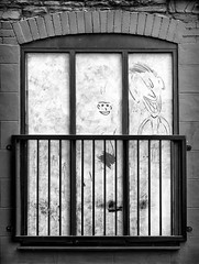 Face at the Window