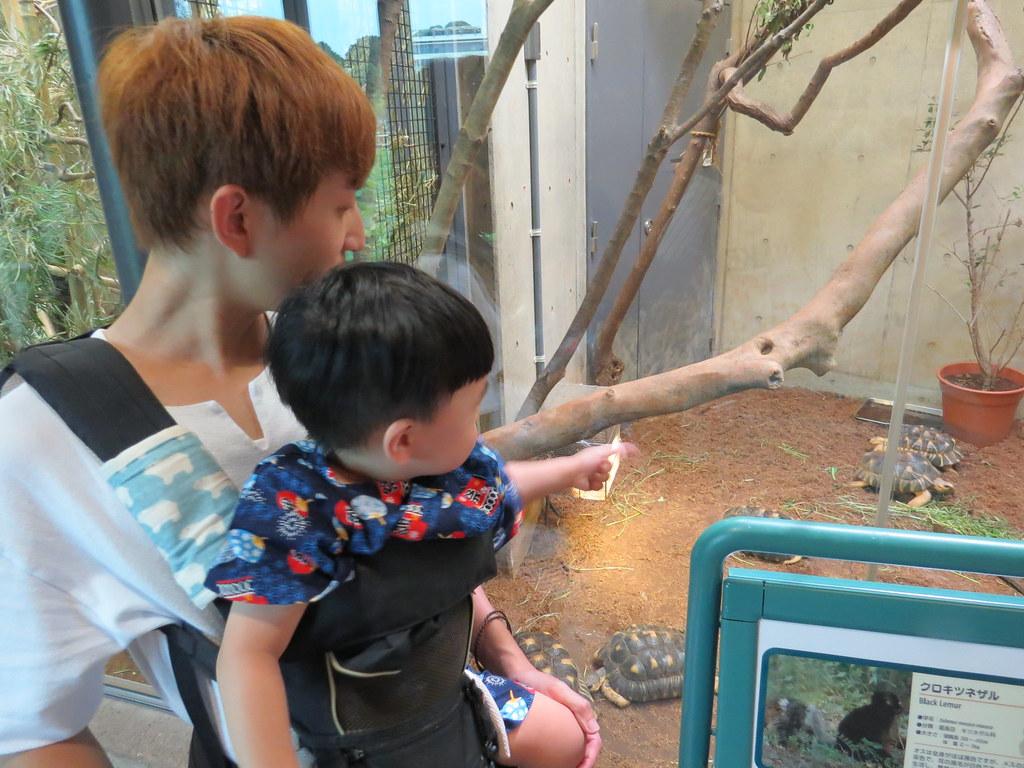 TOKYO ZOO上野動物園(兩光媽咪柳幼幼) (22)