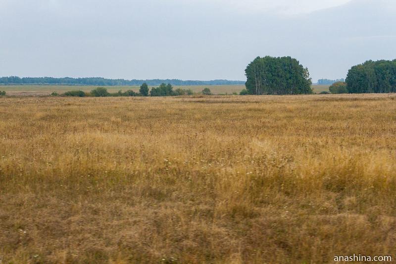 Пейзаж в Пензенской области
