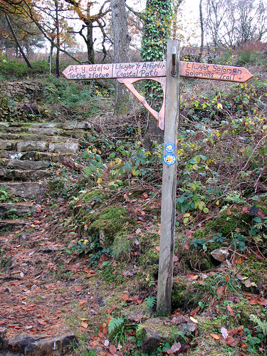 Signpost in the woods