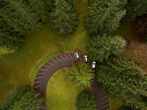 lake crescent lodge bovees meadow aerial dji phantom3 drone forest olympicpenninsula trees cars autos parking lot lakecrescentlodge above wedding edmundlowephotography edmundlowe usa america nature outdoors landscape cedar fir allmyphotographsare©copyrightedandallrightsreservednoneofthesephotosmaybereproducedandorusedinanyformofpublicationprintortheinternetwithoutmywrittenpermission