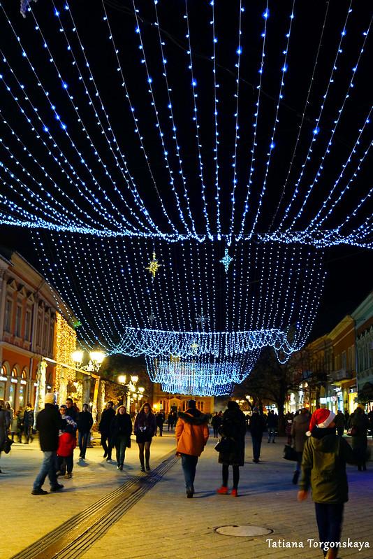 Улица Змай Йовина в декабре