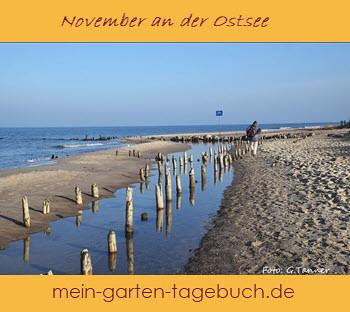 Ostsee Herbst zum Pinnen