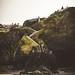 Tolcarne beach, Newquay. Cornwall_harry-kessell-671241-unsplash