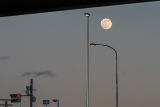Moon & Lights (月街灯)