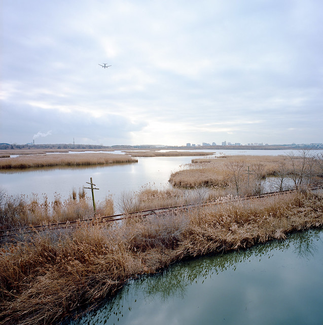 Kearny Marsh
