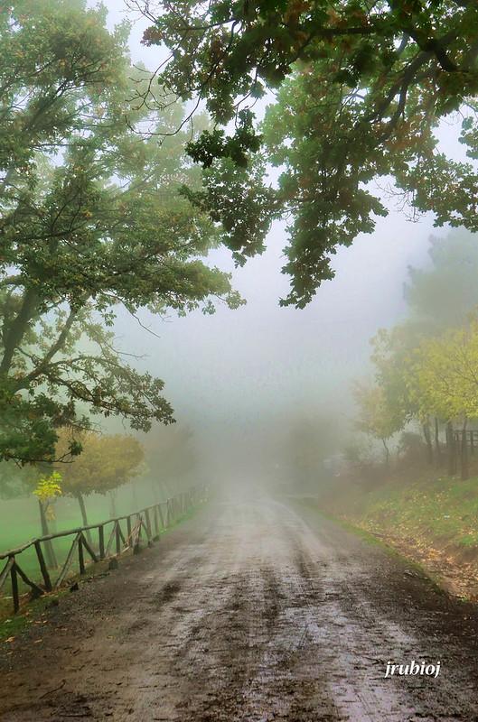 La Niebla en Paisajes44065485460_a9af06b0e7_c