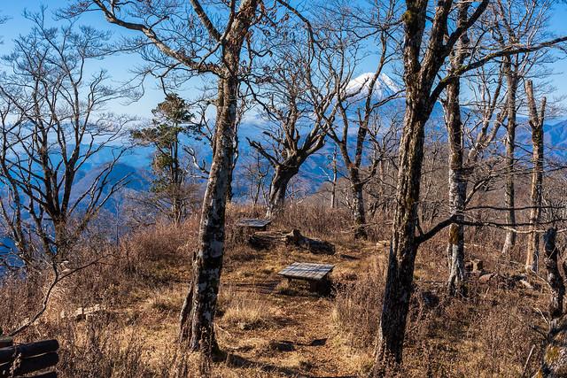 ベンチの置かれた大室山の肩